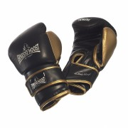 Ernesto Hoost Super Tech Boxing Gloves