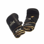 Ernesto Hoost Elite Pro Punching Mitt Leather