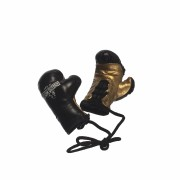 Ernesto Hoost Mini Boxing Gloves