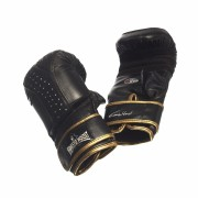 Ernesto Hoost Ultimate Bag Gloves