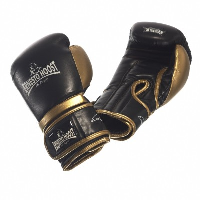 Ernesto Hoost Contest Boxing Gloves