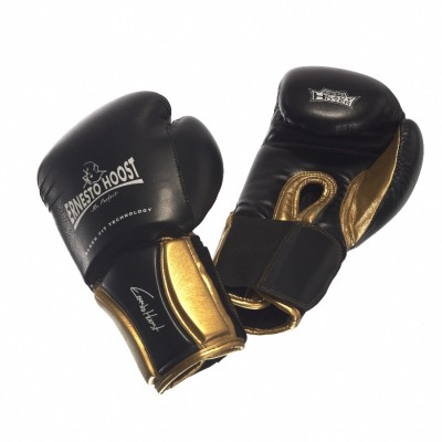 Ernesto Hoost Pro Fight Boxing Gloves